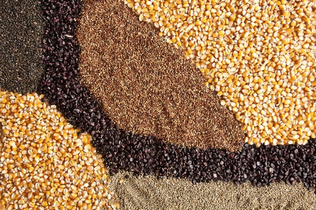 Meng zaad textuur achtergrond