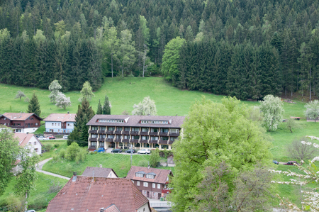guest house: Black Forest guest house