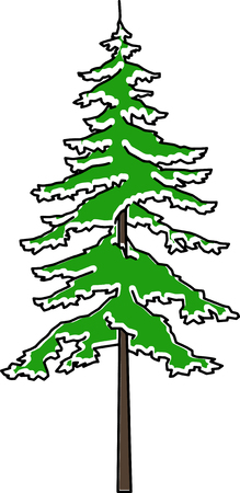 fir in the snow Vector Graphics