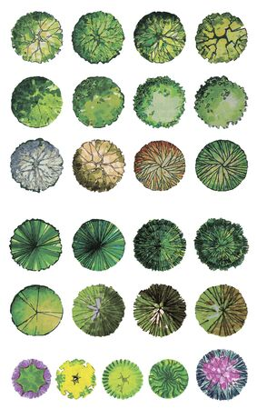 Set of graphic trees, top view