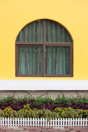Window with yellow wall and flower