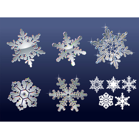 Vector Real snowflakes isolated on blue background  Vector