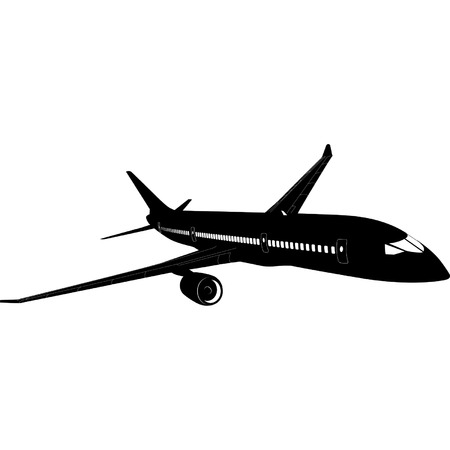 aviations: Vector Passenger Jet B-787