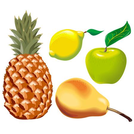 pineapples: Conjunto de vectores frutas