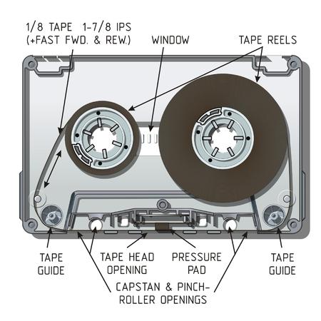recording studio: Vector audiocassette