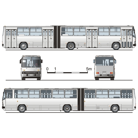 hi-detailed urban bus articulated Vector