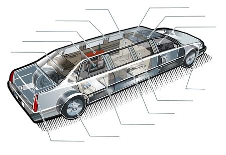 cutaway drawing: Vettore limousine inforgaphics taglio Vettoriali