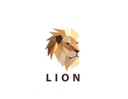 Colorful Lion Head Logo on white
