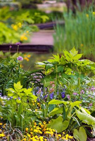 urban gardening: Landscaped flower garden Stock Photo