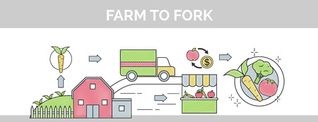 sows: From farm to fork flat thin line scribble header banner illustration. Sows how organic food makes its way from farm to your plate