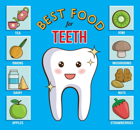 gums: Infographic chart for dental and health care. It shows best food products for teeth, gums and enamel. Dairy, fruit, nuts, vegetables