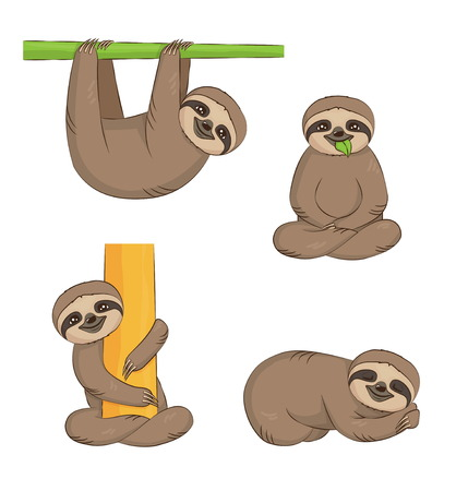 A set of cute cartoon smiling lazy sloth animal characters in different positions. Sloth on the tree, sleeping, eating, sitting.
