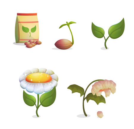 weeds: A collection of objects showing flower growing stages, seeds and a paper bag, growing sprout, flowering and fading withering plant. Game and app ui icons.