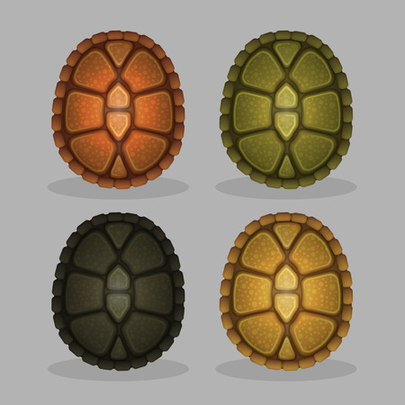A collection of ocean sea turtle shells, amphibia animal shield back cover, realistic close-up pattern view, 4 color variations of turtleshells.