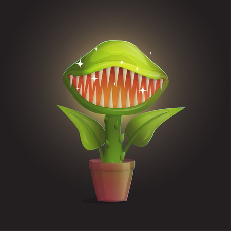 Venus flytrap flower carnivorous plant illustration. Wild deadly hungry plant in pot on dark background.