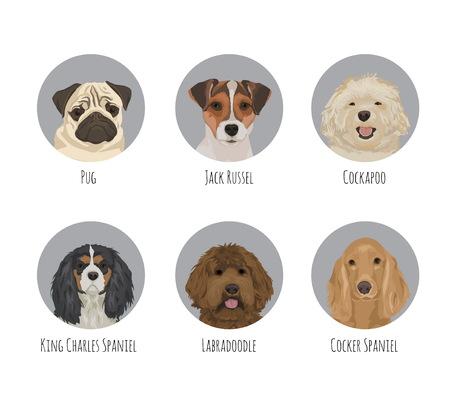 Runde Kreisporträtausweisaufkleber des Hundetierhaustieres runde. Verschiedene Hunderassen und Art, freundliche niedliche Jack Russel Terrier, Mops, Spaniel, Labradoodle, Cockapoo