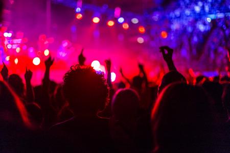 rock concert: personas bailando en el concierto de rock Foto de archivo