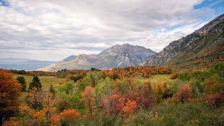 Fall colors looking towards Timpanogos Mountain.