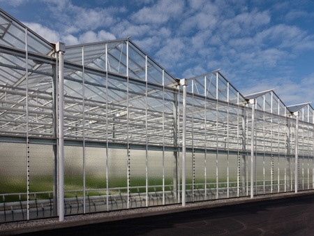 Sideview of a new greenhouse against a blue sky