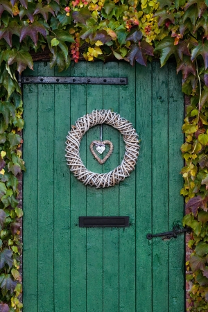 Old green barndoor surrounded by beautiful ivy during autumn photo