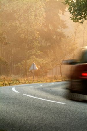 striping: Car driving by in a colorful forest during autumn in The Netherlands