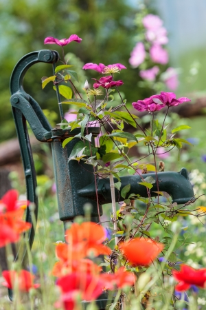 Vintage hand pump in spring garden with colorful flowers photo