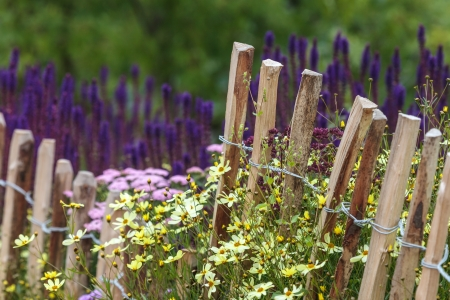 Wooden chestnut fence in spring surrounded by blossoming flowers photo