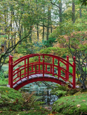 Red traditional Japanese bridge in a colorful autumn garden