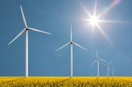 coleseed: Windturbines on a bright sunny day in a field with coleseed used for fuel production