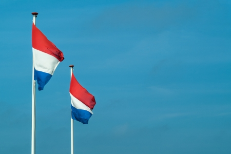 Two Dutch flags in a row against a blue sky photo