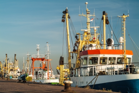 commercial docks: Fishing boats in a harbor in The Netherlands