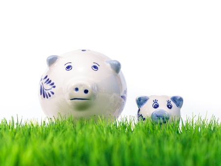 Mother and child Dutch miniature souvenir pigs on fresh grass Stock Photo - 15612414