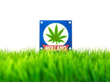 Dutch souvenir tile on grass with marijuana symbol isolated on white photo