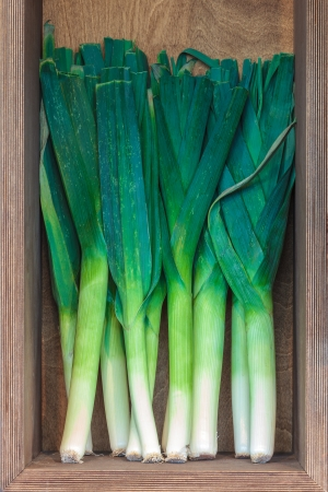 Fresh leek in a vertical wooden box photo