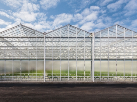 Front view of a new greenhouse in The Netherlands photo