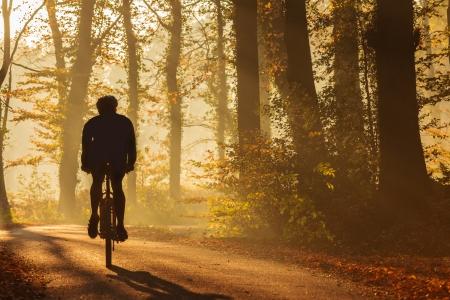 Silhouette d'un cycliste en automne sur un après-midi ensoleillé
