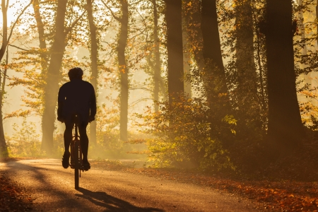 Silhouette of a biker in autumn on a sunny afternoon photo