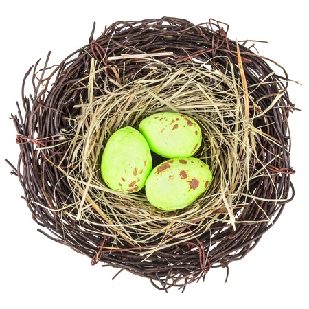 Bird nest with three little eggs isolated on a white background photo