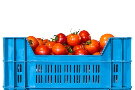 Blue crate with fresh tomatoes isolated on a white background photo