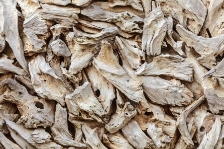 eroded: Pattern with pieces of dried beach drift wood Stock Photo