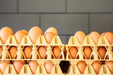 packaged: Crates with fresh eggs in front of a grey wall on an organic chicken farm Stock Photo