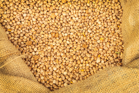 lupine: Bag with fresh lupine beans used as alternative to soja beans