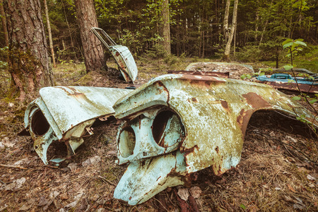 scrap car: Parts of an old rusted and weathered scrap car in a forest