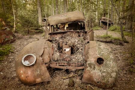 oxidado: Tonos sepia imagen de un viejo oxidado y degradado coche chatarra en un bosque