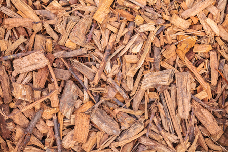 splinter: Background pattern with wood chips for garden landscaping