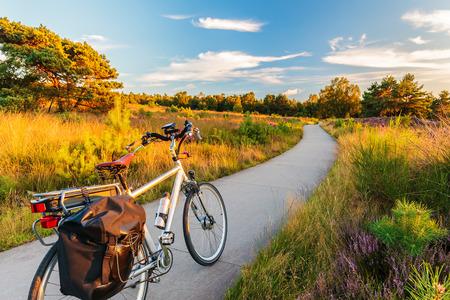 Bicicletta elettrica nel parco nazionale olandese Il Veluwe con fioritura brughiera, Paesi Bassi