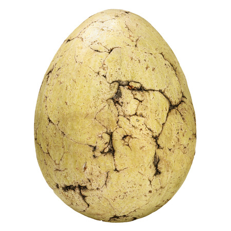 Ancient fossil stone egg with cracks isolated on a white background