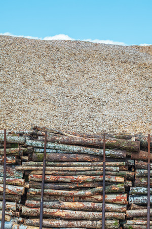 Pile of wood logs and wood chips on a lumber factory Stock Photo