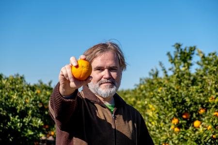 Farmer shows an orange in his field