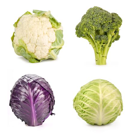 Broccoli, red cabbage, cabbage and cauliflower, isolated on white